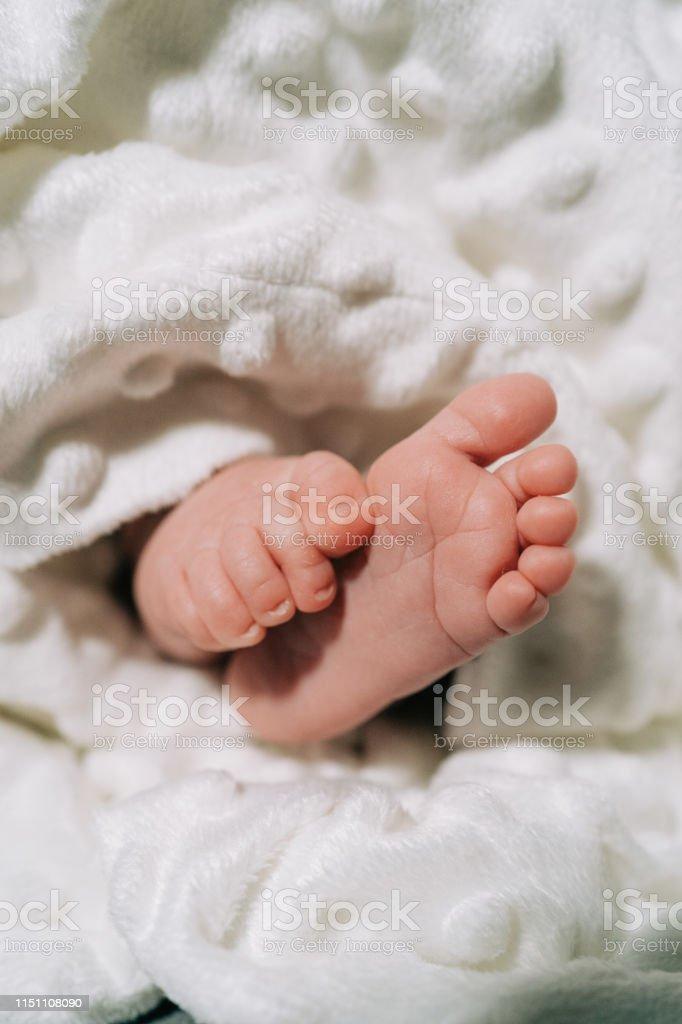 New Born Baby Small Feet on White Blanket. Family, new life,...