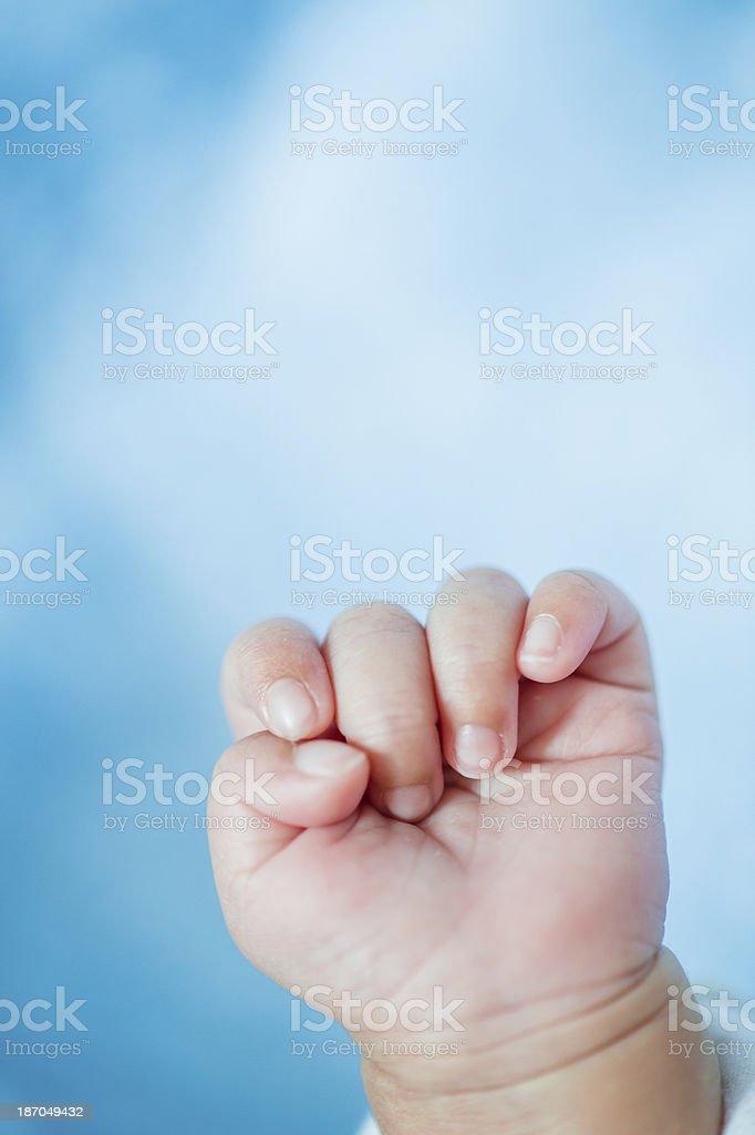 New Born Baby's Hand royalty-free stock photo