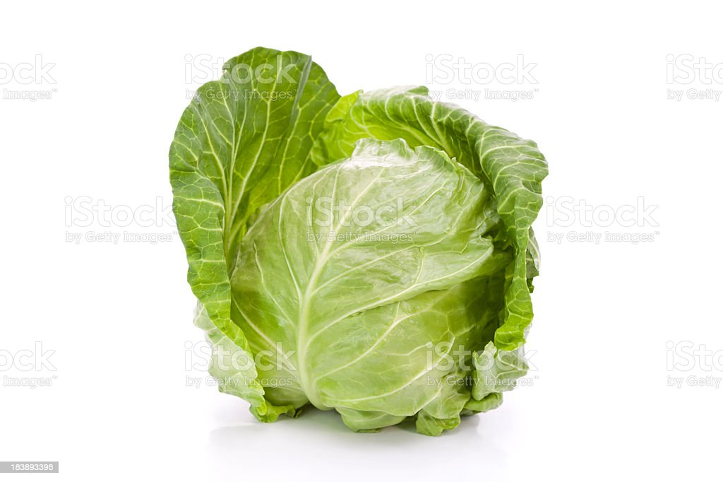 New cabbage stock photo