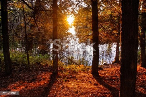istock New Day Dawns 521265619