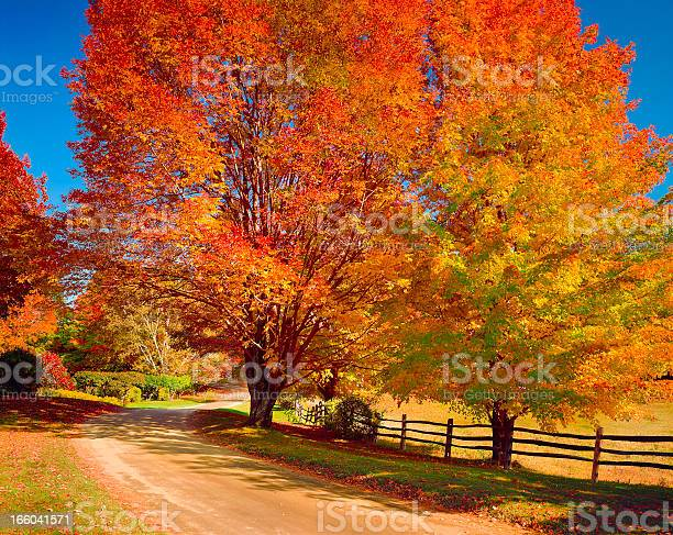 New England Autumn Country Road Stock Photo - Download Image Now