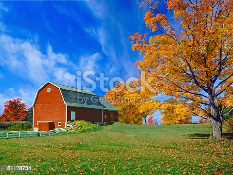 New England country side with autumn sugar maples and red  barn