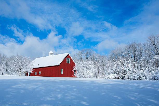 New England Barn in the Snow A red barn after a snow storm barn stock pictures, royalty-free photos & images
