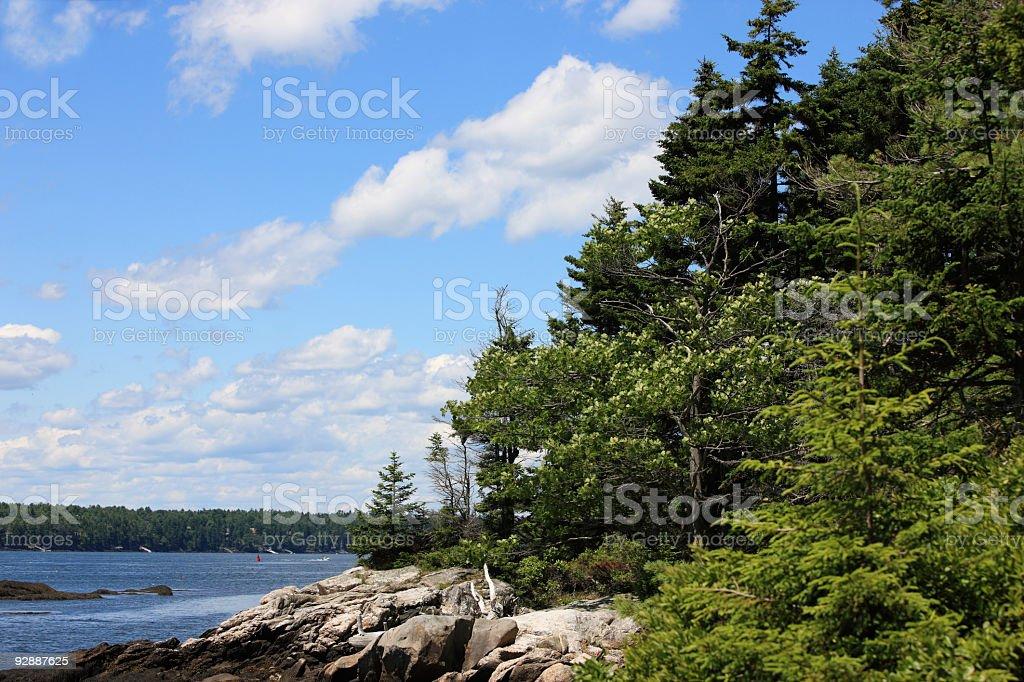 New England coastal nature scenery, Maine, USA. stock photo