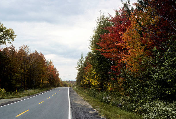 New England fall foliage on a long lonely road Fall foliage somewhere in New England flanks a lonely road under cloudy skies hearkencreative stock pictures, royalty-free photos & images