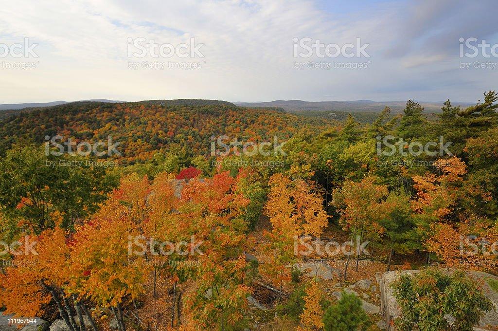 New England Fall Foliage View stock photo