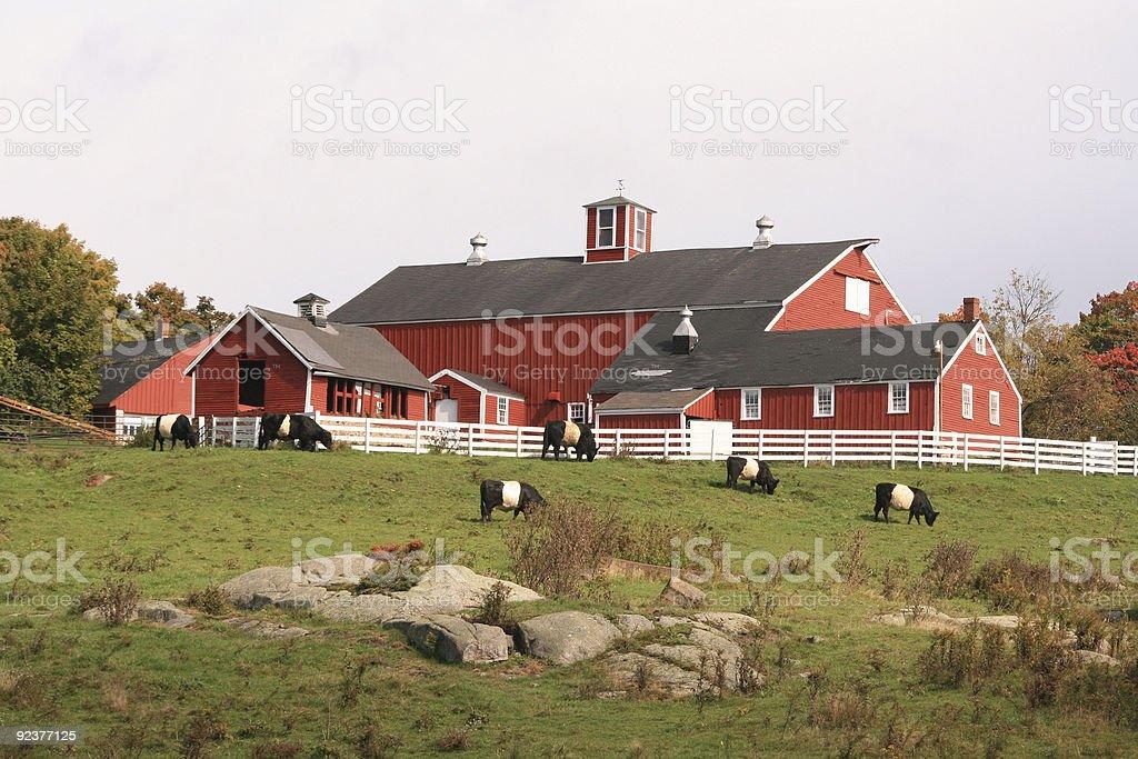 New England Farm royalty-free stock photo
