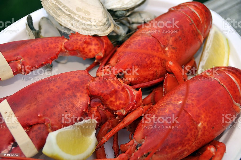 New England Lobster and Steamers royalty-free stock photo