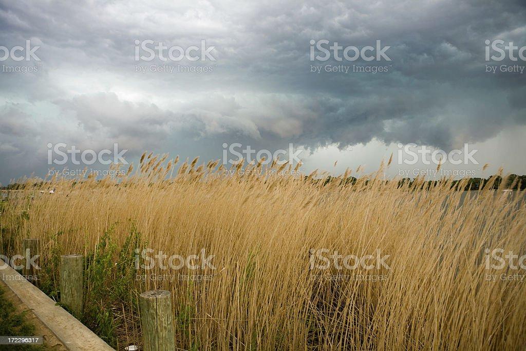 New England Storm stock photo
