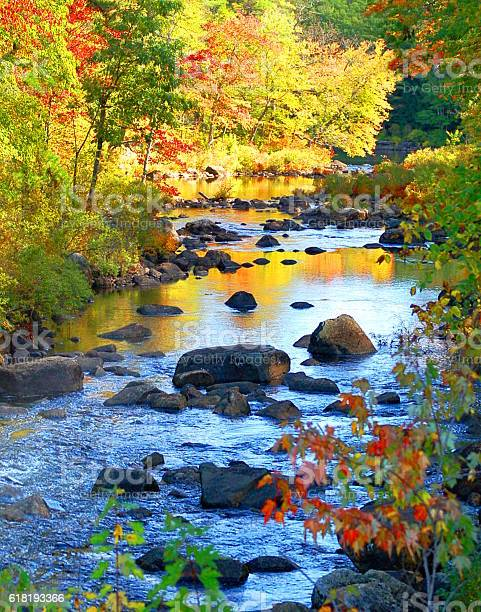 Photo of New Hampshire Forest River In Autumn