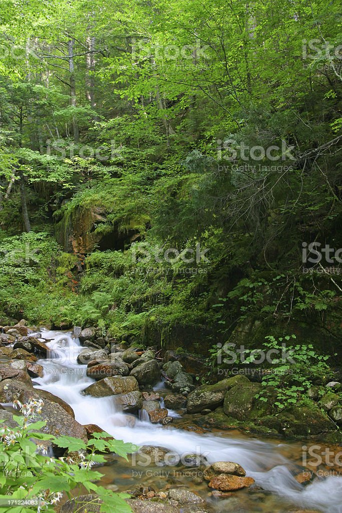 New Hampshire River Waterfall Franconia Notch White Mountains royalty-free stock photo