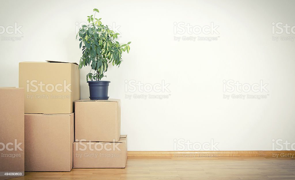 New home concept. Boxes in empty room. stock photo