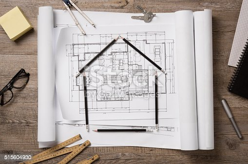 istock New home project 515604930