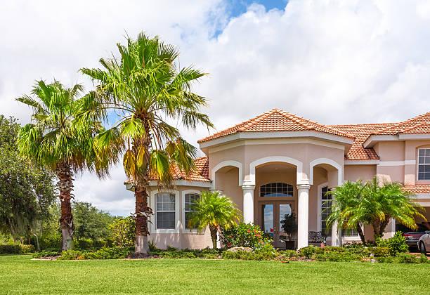 neues zuhause mit palmen und tropischen pflanzenwelt - palmengarten stock-fotos und bilder