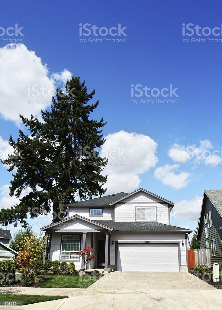 New Home with Tall Tree in the Back Yard royalty-free stock photo