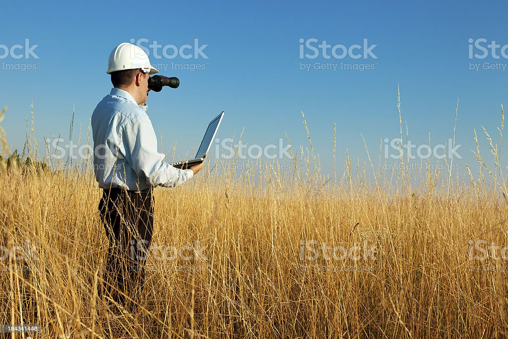 New investment royalty-free stock photo