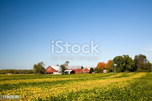 A typical cluster of farm buildings with soybean field in foreground. Includes an old fashioned windmill. See 2 vertical versions: