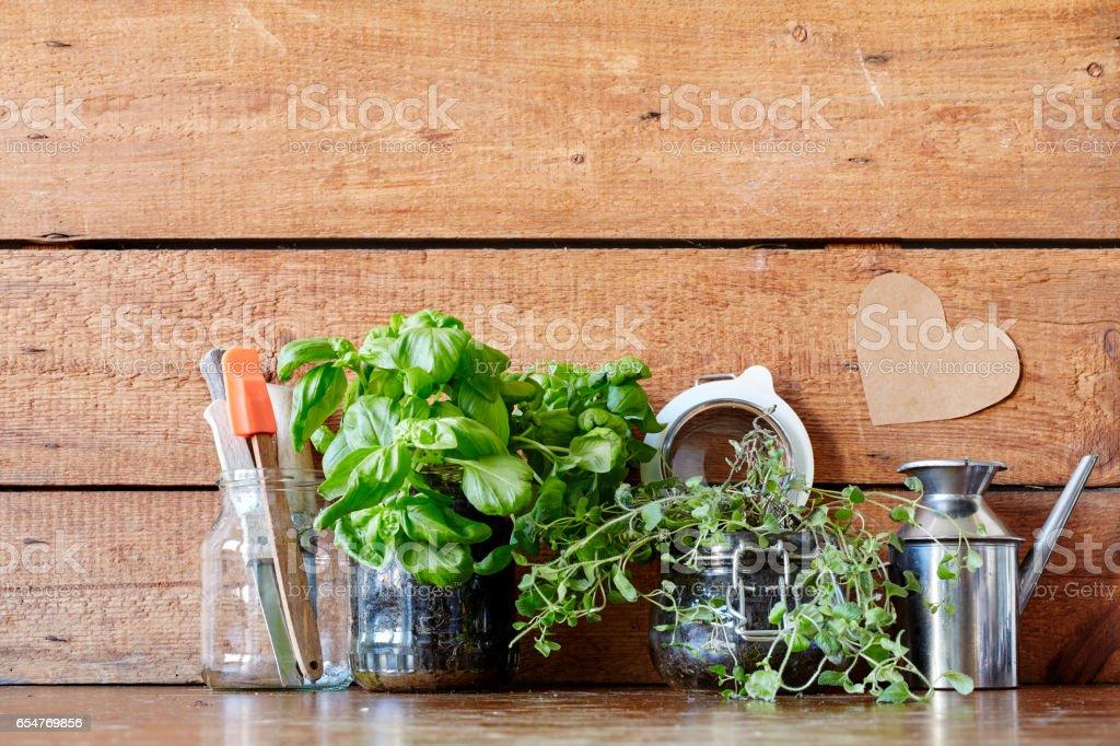 New Kitchen Decoration Ideas Herbs In Jars Stock Photo