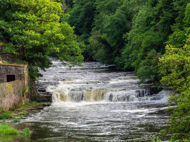 Nova Lanark Falls - foto de acervo