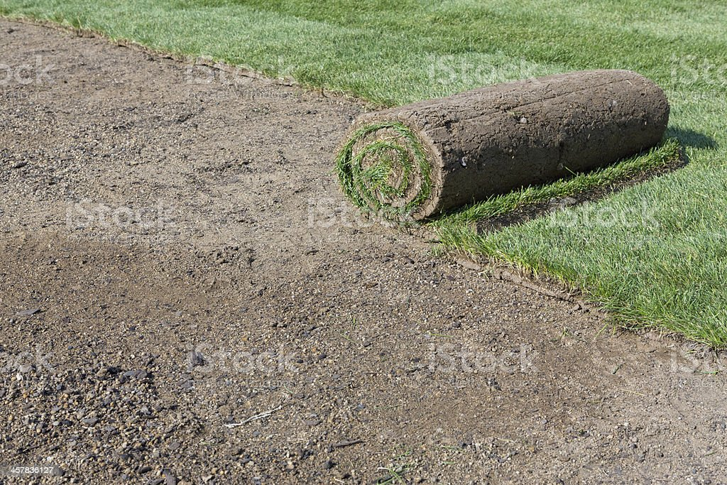 new lawn royalty-free stock photo