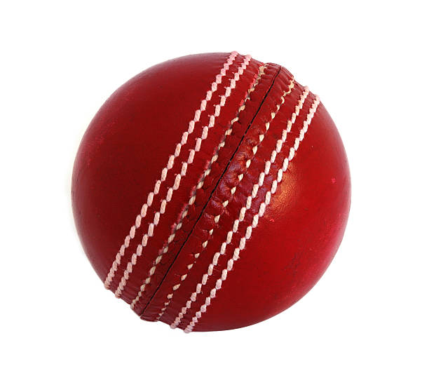 Cricket Bats and Balls Are Not Just the Significant Accessories