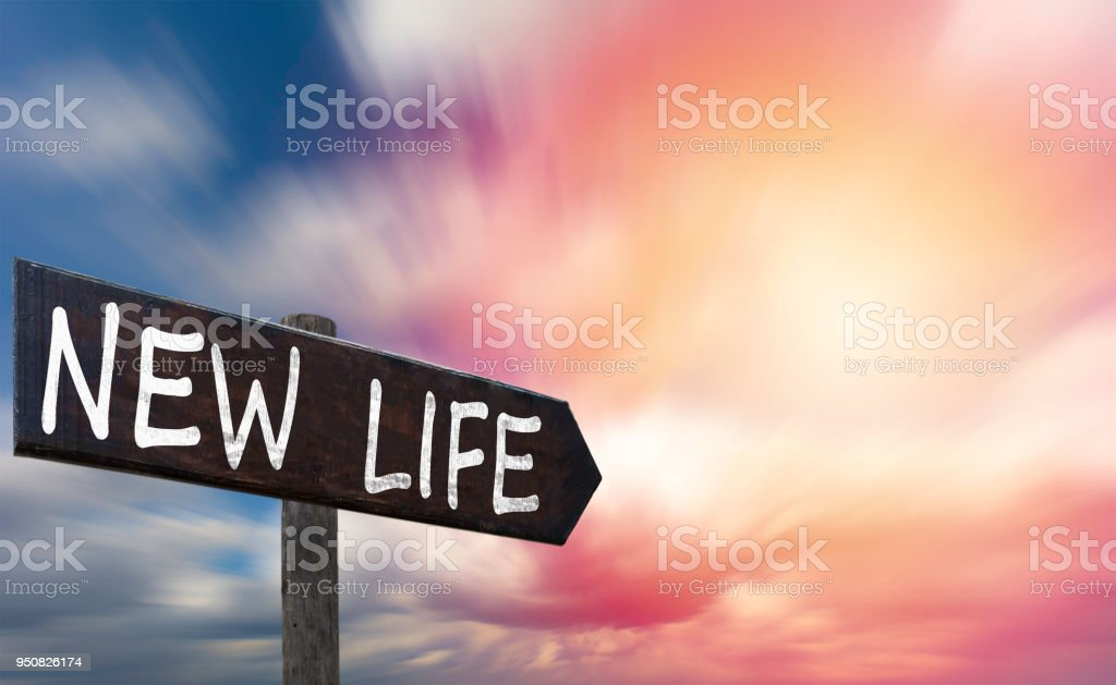 Foto De Frase Motivacional Vida Nova No Signo De Madeira