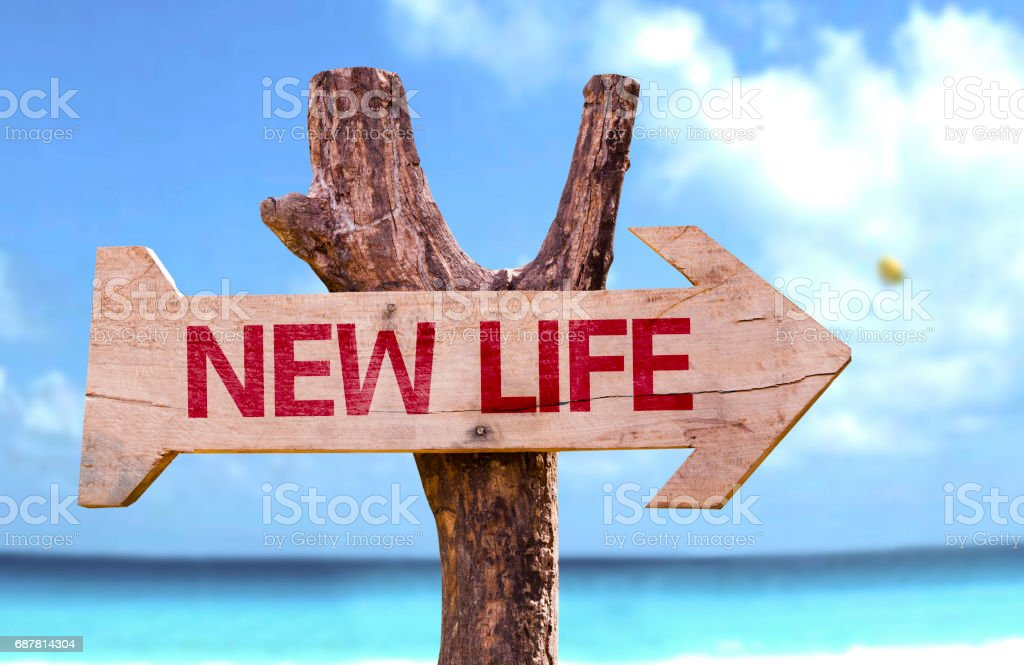 New Life wooden sign stock photo