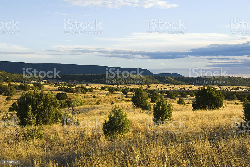 New Mexico Southwest Landscape in Fall stock photo
