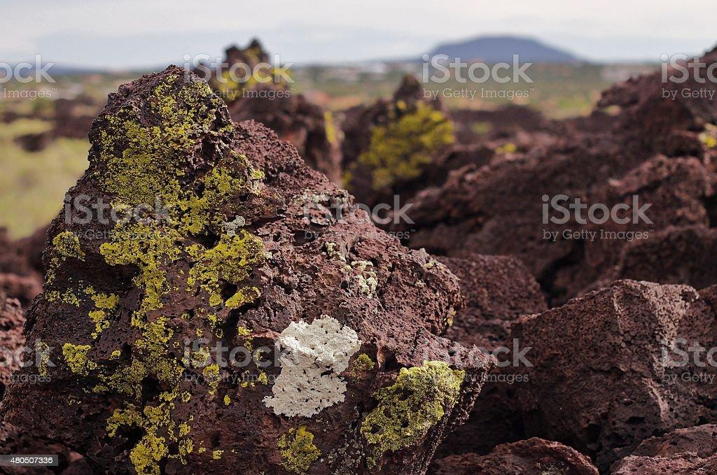 New Mexico's Badlands stock photo
