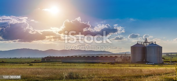 New modern pig farm exterior in countryside
