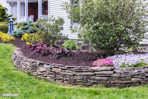 This garden terrace behind a slate rock wall has just been completely weeded and cleaned up with fresh mulch spread evenly on the ground surrounding ornamental bushes and flowers. See first related photo below for the comparison