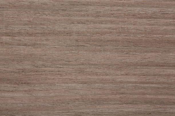 neue mutter furnier textur für ihr natürliches interieur. - stockwerke des waldes stock-fotos und bilder
