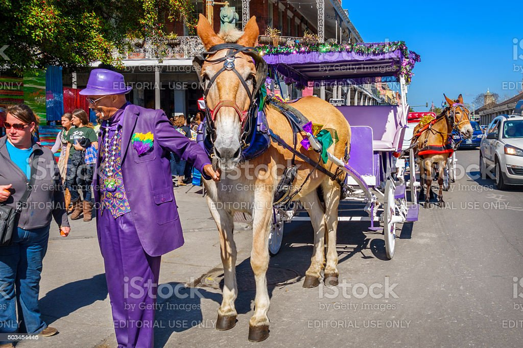 New Orleans French Quarter Carriage Tour stock photo