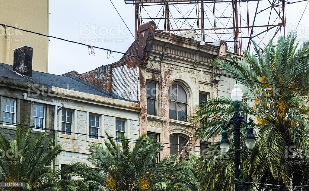 New Orleans French Quarter Roof Tops and Palm Trees stock photo