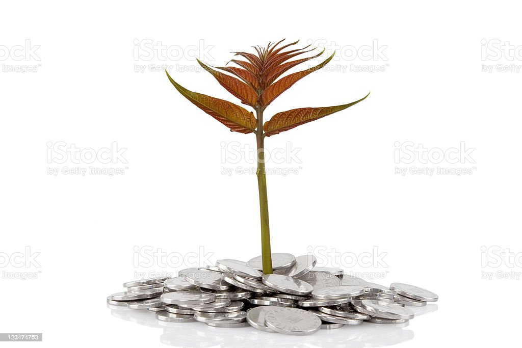 New plant growing from the coins royalty-free stock photo