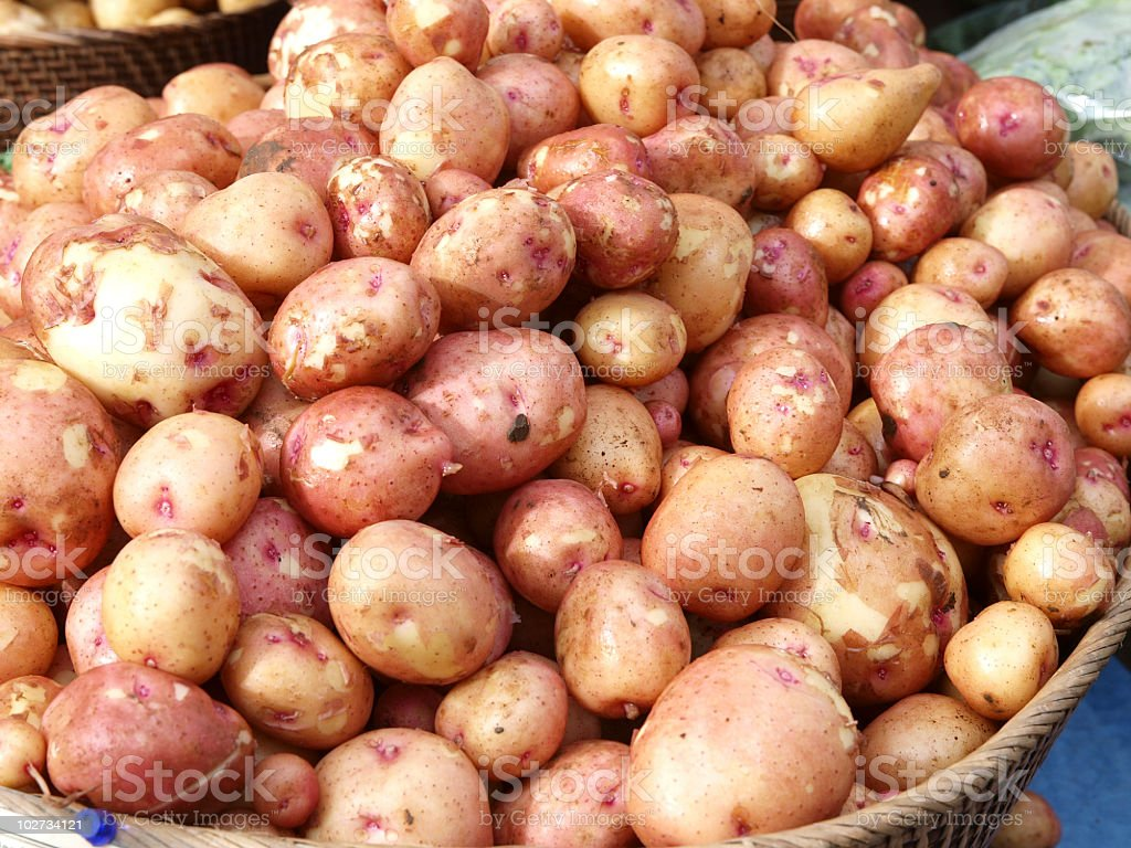New Potatoes in the Market royalty-free stock photo