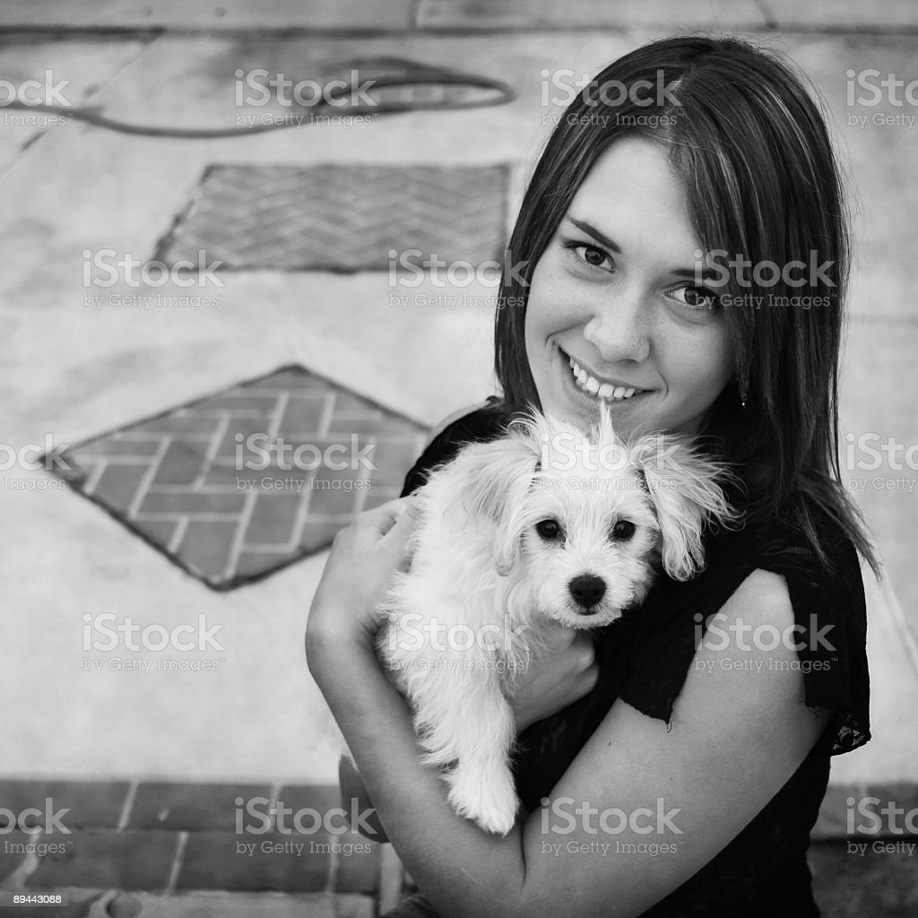 new puppy royalty-free stock photo
