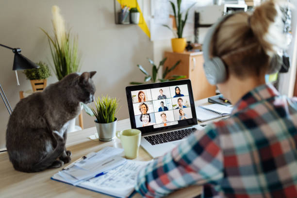 New reality - working from home with pets and kids stock photo