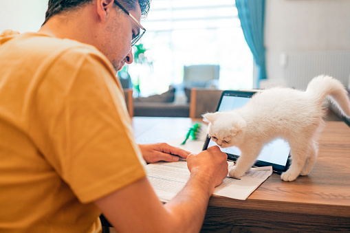New reality - working from home with pets