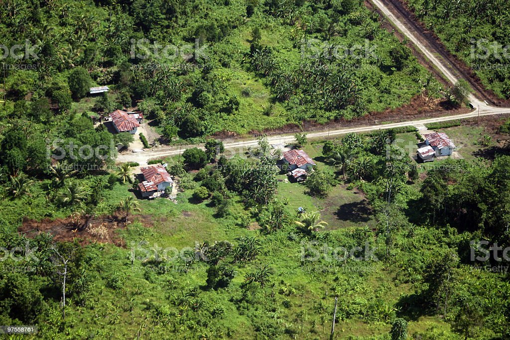 New Settlement in Indonesian rainforest. royalty-free stock photo