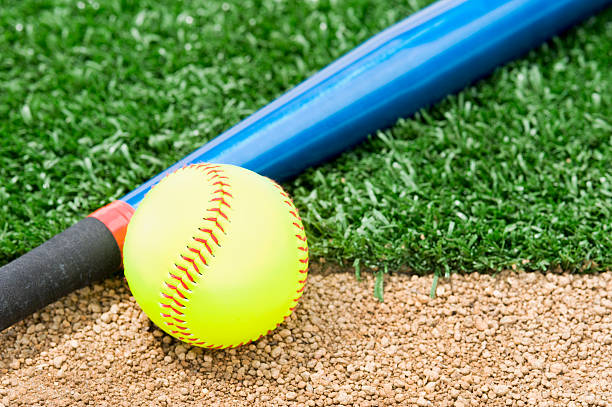 new softball and bat - softball stock photos and pictures