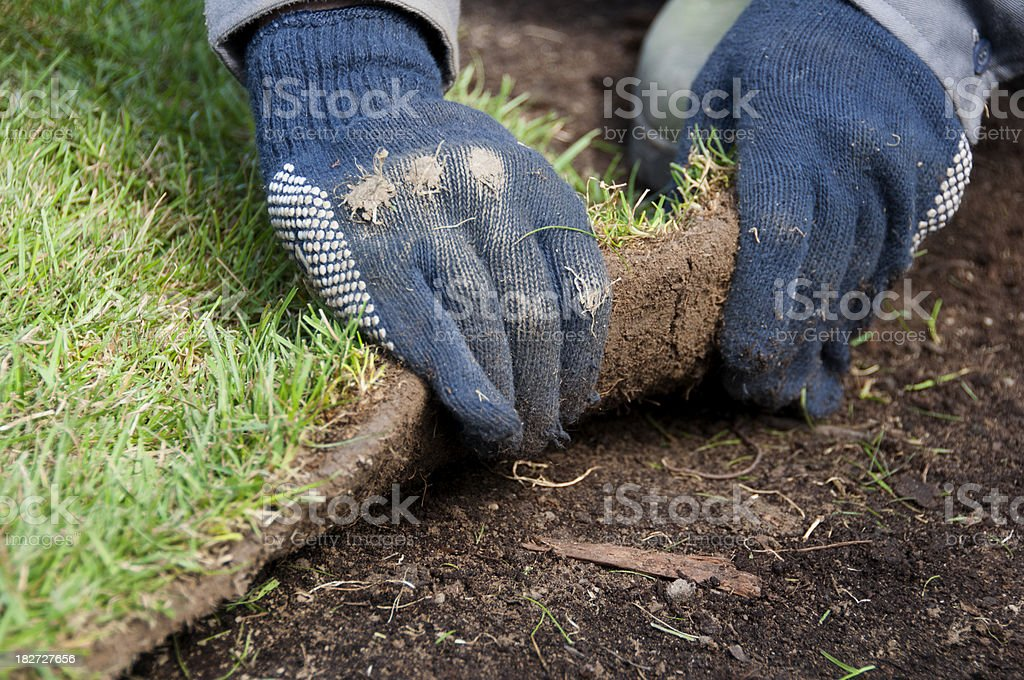 New turf laid down to make a lawn with grass royalty-free stock photo