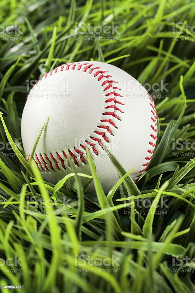 New White Baseball in green grass royalty-free stock photo