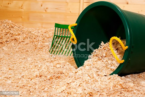 A green muck bucket dumping new wood shavings for the animal bedding in a stall with a manure fork in the background.