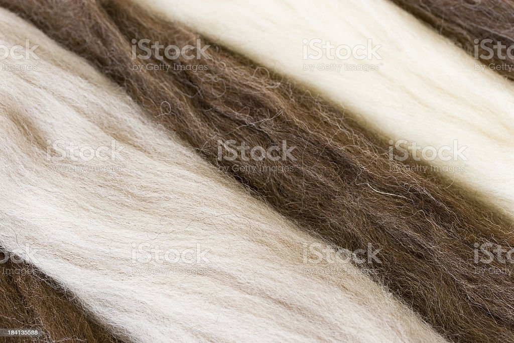 New wool, combed top in white, gray and brown stock photo