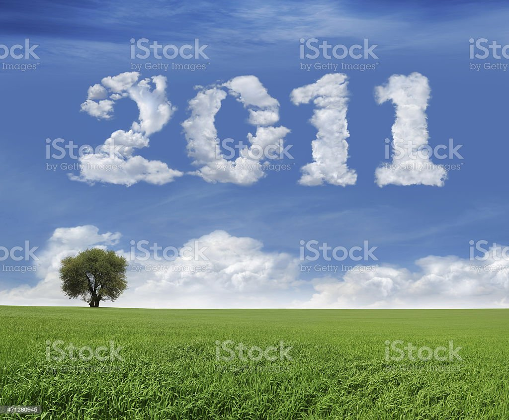 New Year 2011 And Field royalty-free stock photo