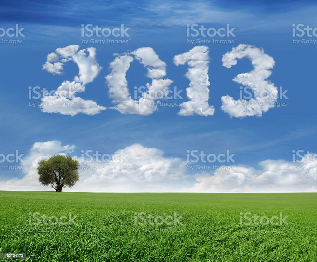 New Year 2013 And Field royalty-free stock photo