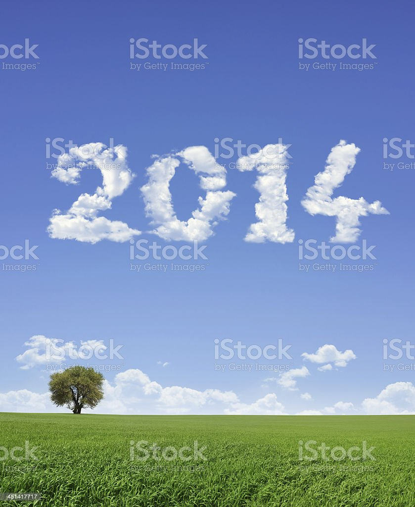 New Year 2014 And Field royalty-free stock photo