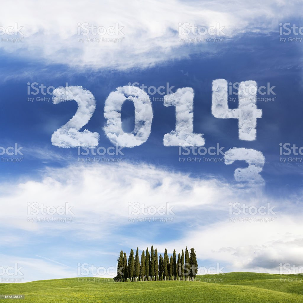 New year 2014 skywriting in the field nature royalty-free stock photo