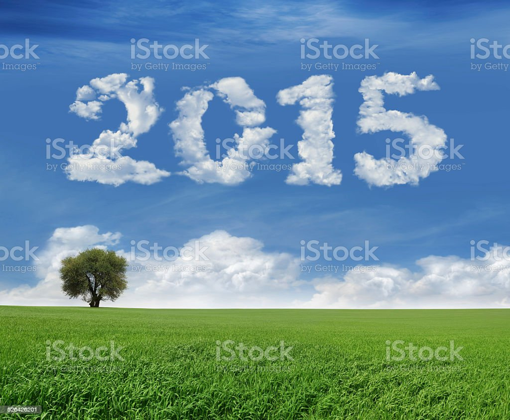 New Year 2015 And Field royalty-free stock photo